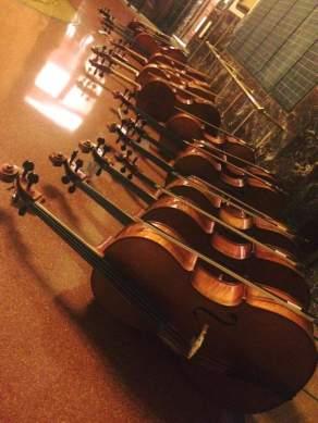 violoncelli a riposo
